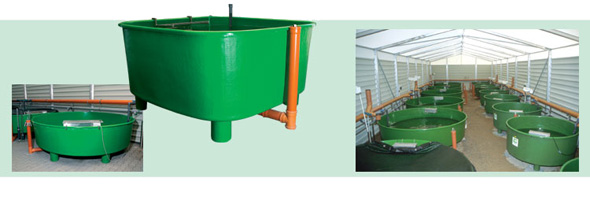 GFK Rearing Tanks and Basin